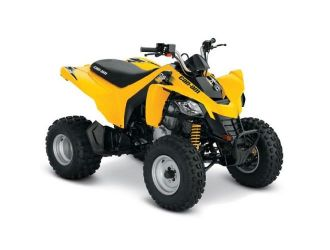 Can-Am DS 250 '19